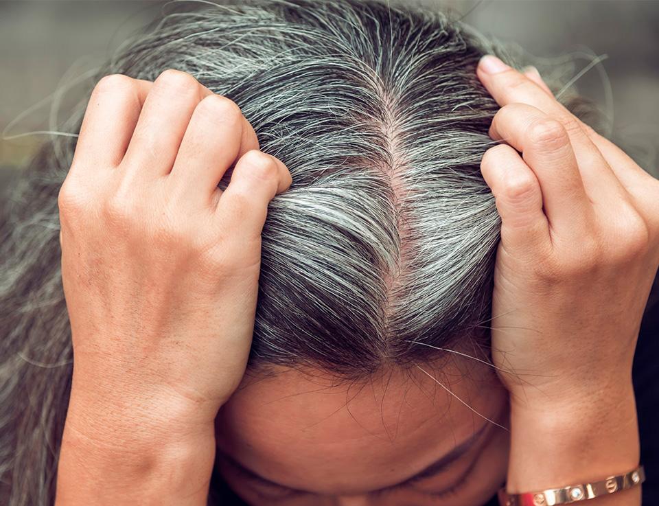 Советы по борьбе с седыми волосами