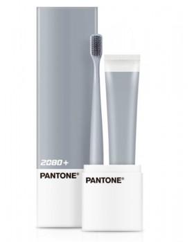 Зубна щітка і паста 2080 + PANTONE Portable Set Microbrush Gray